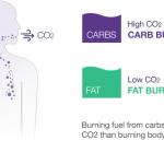 息を吹きかけるだけで簡単にリアルな消費カロリーを正確に計測するダイエットアドバイザー「Lumen」