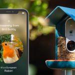 """<span class=""""title"""">野鳥の姿や鳴き声を検知すると自動録画と通知を行い、AI画像解析で種別も当ててしまうエサ箱「Bird Buddy」</span>"""